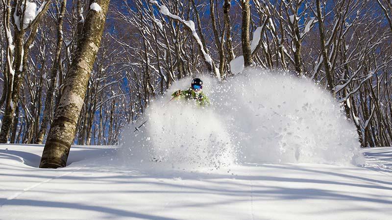白馬私人野雪行程