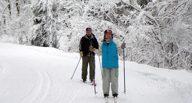 enjoying a cross country ski tour at Hakuba's Snow Harp
